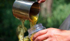 miel apicola