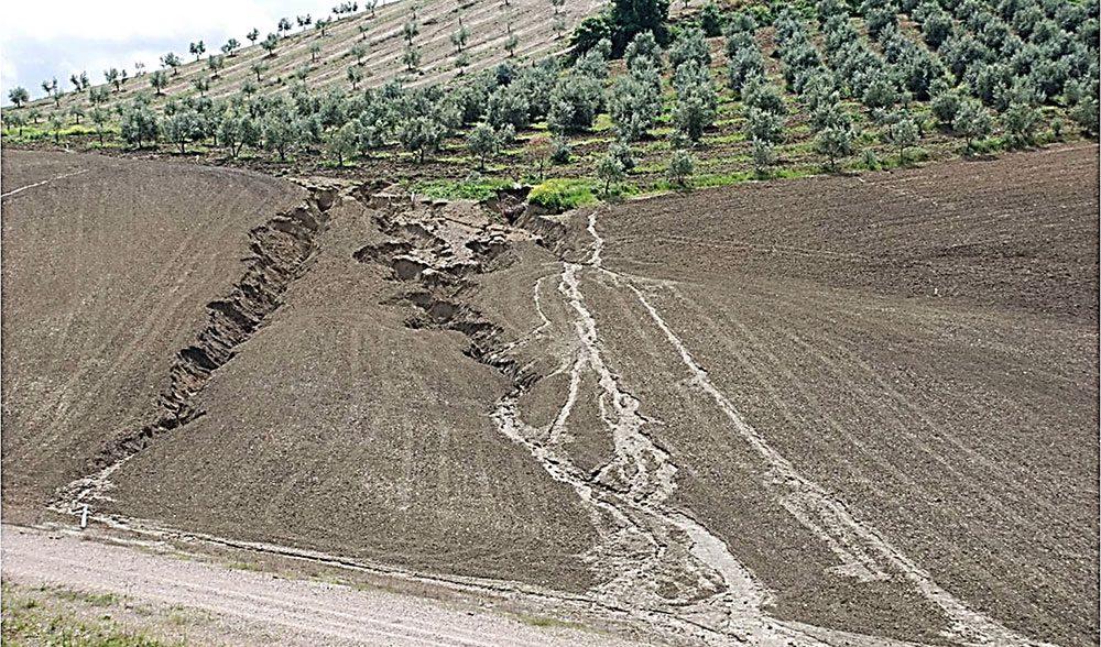 erosion lluvia escorrentia danos seguro olivar