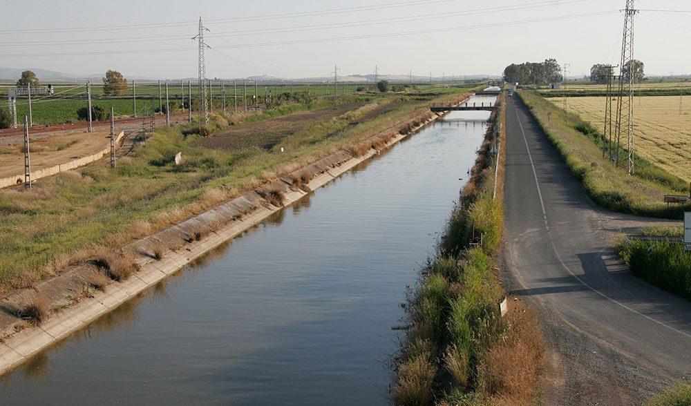 canal riego regadio