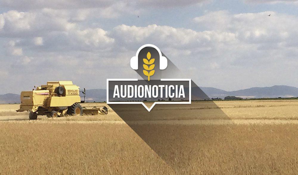 cereal cosechadora audionoticia