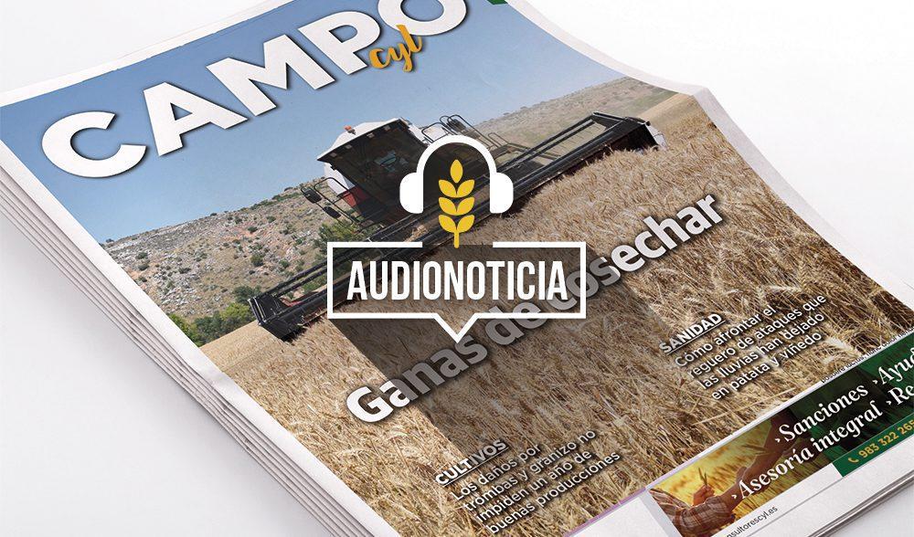portada-audionoticias