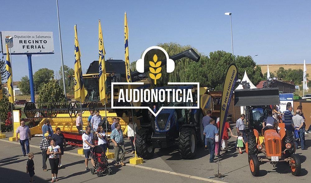 salamaq-audio